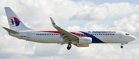 The established logo of MAS