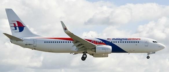 The established logo of MAS